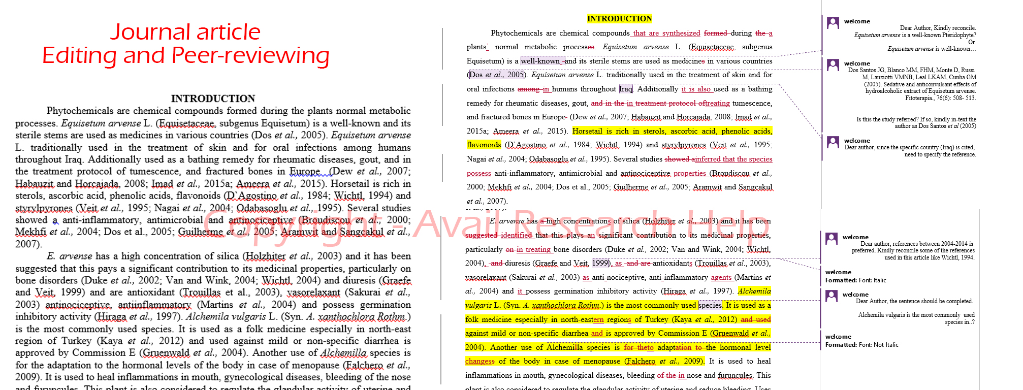 Professional Peer Reviewed Journal Article Editing and Proofreading Services